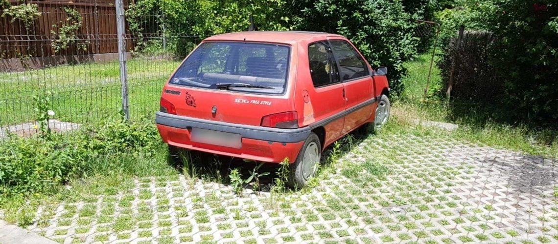 auto abandonate 2021 (3)
